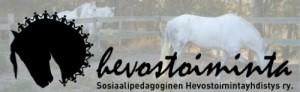 hevostoiminta